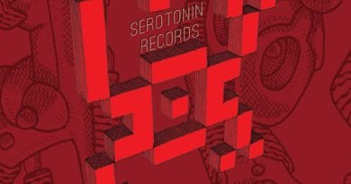 """SERD023 Various – """"Its What We Live For Volume 2"""""""