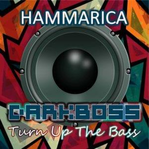 darkboss - turn up the bass