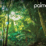 LISTEN: Palma Releases New Melodic House Single 'Crisp Air'